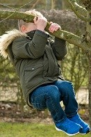A little boy swinging from a branch